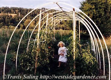 Build a PVC Hoophouse - Finished Structure
