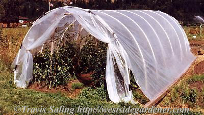 How To Build A Pvc Hoophouse For Your Garden The